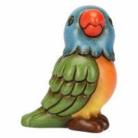 Small parrot rainbow
