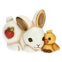 Rabbit with little chicken