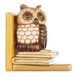 Bookends owl on books