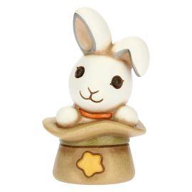 Small magic rabbit insiede hat