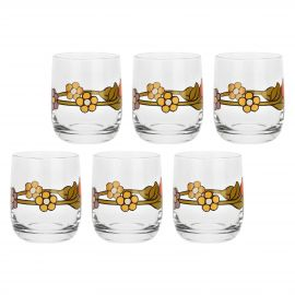 Set of 6 Country glasses with flower and tulip